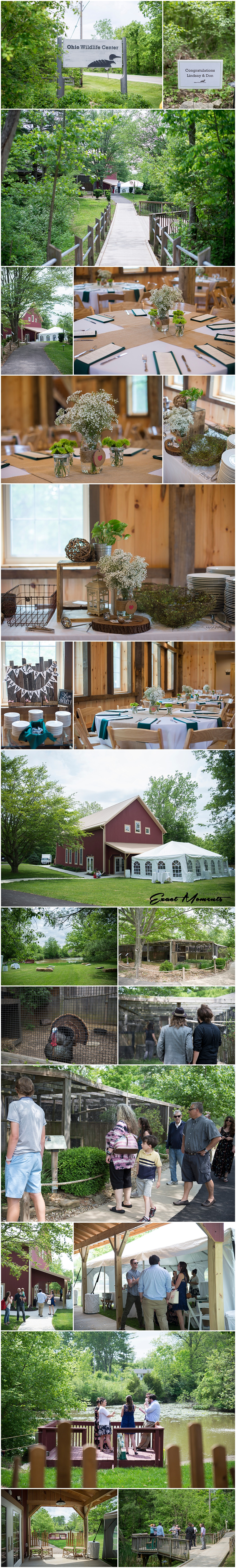 Ohio Wildlife Center Wedding Reception